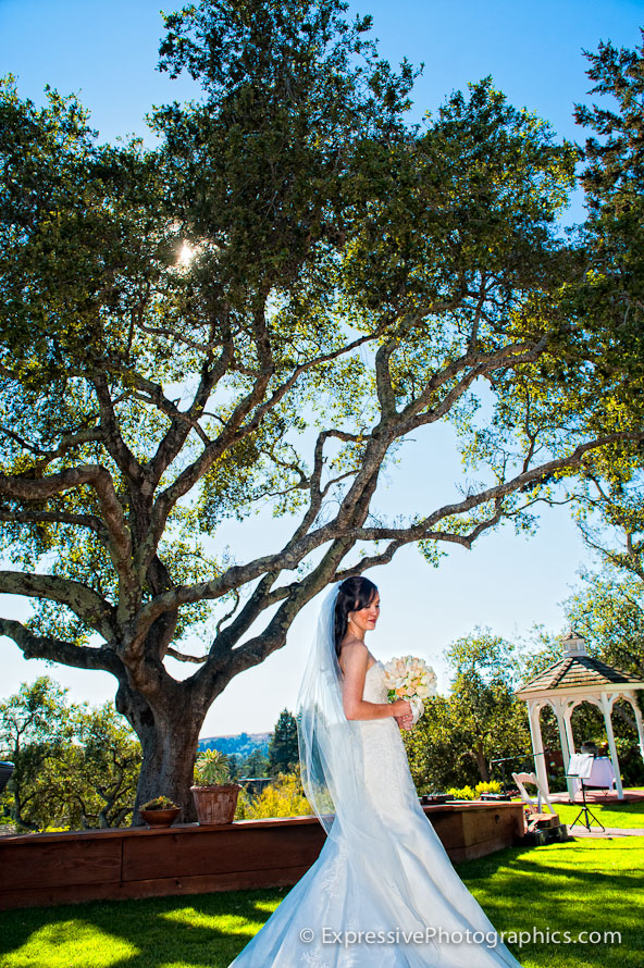 bride portrait at hollins house