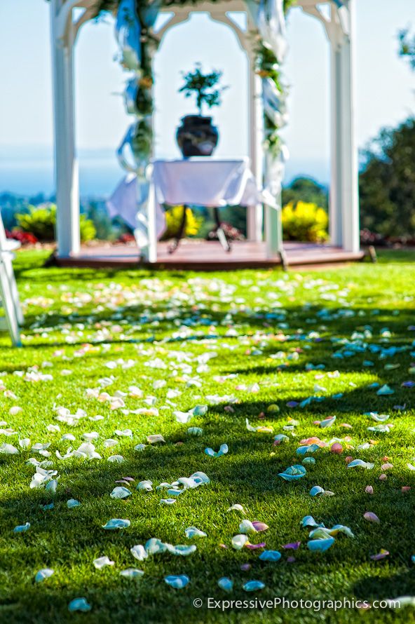 wedding ceremony site, hollins house, santa cruz