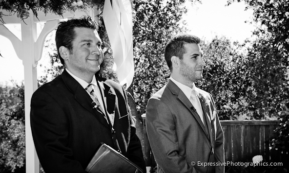 wedding ceremony, hollins house, santa cruz