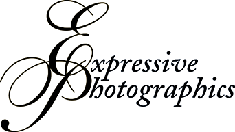 Expressive Photographics