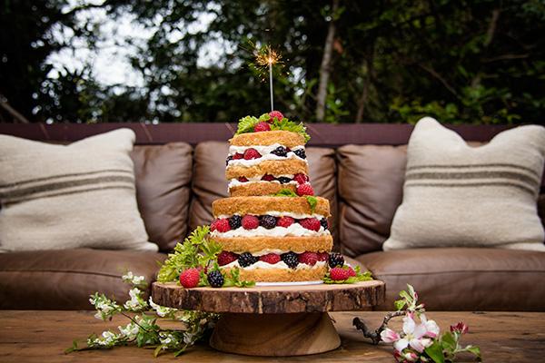 hollyhock-cakes